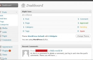 Set up a WordPress Blog for a Business